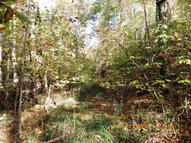 94.22 Acres West Short Mountain Rd Sneedville TN, 37869