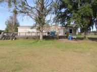 4209 Ohara Place Dover FL, 33527