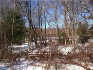 Lot 306 Little Mountain Road Ringtown PA, 17967