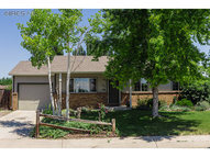 901 Mesa Ct Windsor CO, 80550
