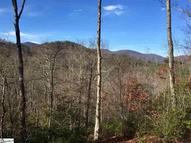 35 White Fox Trail Cmp-Wv-12 M Marietta SC, 29661