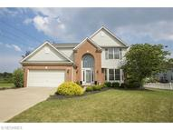 9119 Aaron Ln Olmsted Township OH, 44138