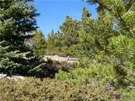 Lot 525 Hilltop Road Idaho Springs CO, 80452