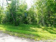 Lot 23 Evening Star Lane Emily MN, 56447