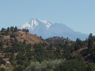 Lot 50 Dennis Place Hornbrook CA, 96044