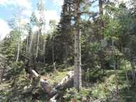 Lot 9 Porcupine Road Taos Ski Valley NM, 87525